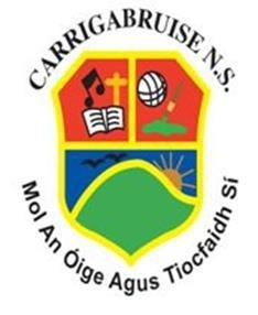 Carrigabruise National School Logo